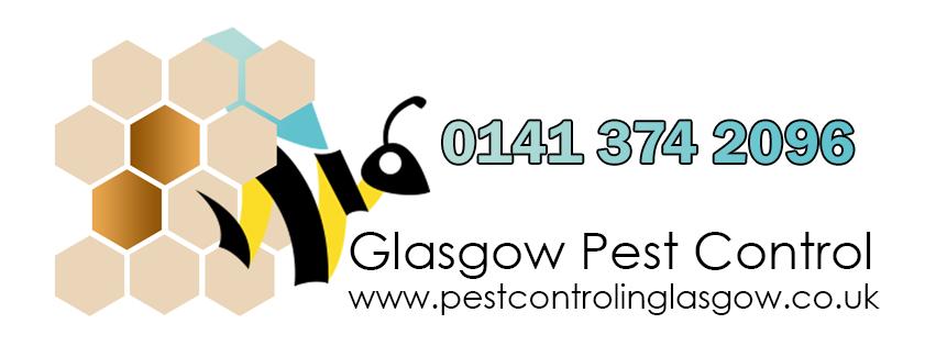 Pest Control in Glasgow